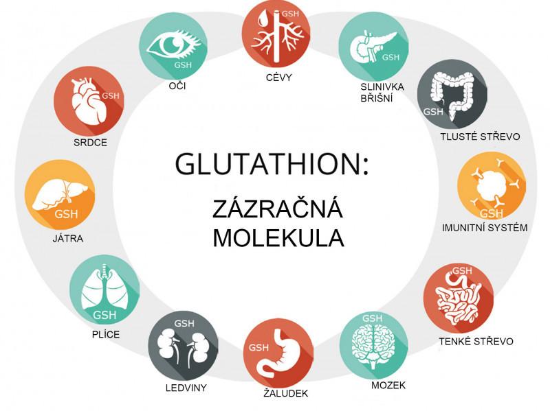 Glutathion – látka tělu vlastní a velmi důležitá, ale přitom pro většinu z nás neznámá.