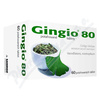 Gingio 80 tablet 60x80mg