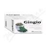 Gingio 100 tablet